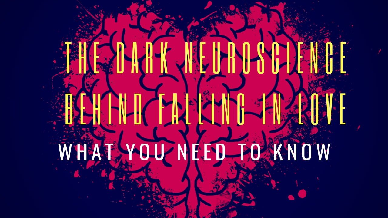 The Dark Neuroscience Behind Falling in Love: What You Need to Know
